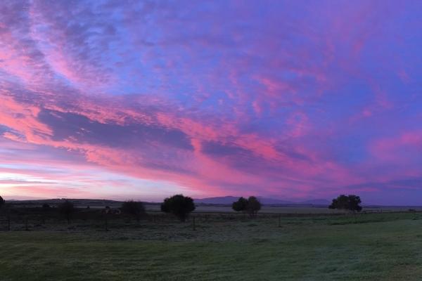 sunrise-at-promhills-june-2016B73936D9-2F30-6280-E3D1-CC766652DD52.jpg