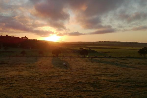 sunrise-at-promillsB3051263-A751-A065-5C18-D6A73546511A.jpg