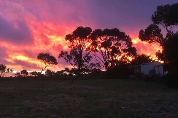 sunset-5-12-16326FAADA-833B-065F-6144-9983D5C3DDD0.jpg
