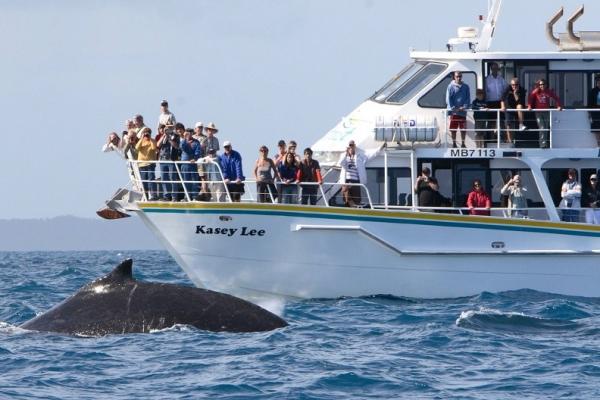 wildlife-coastal-cruises63B5CC92-079E-8874-1922-71D7F7C1D991.jpg